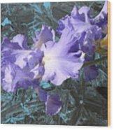 Iris Azulez Wood Print