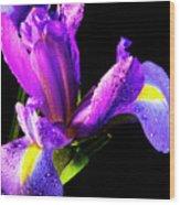 Iris Bloom One Wood Print
