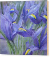 Iris Bouquet Wood Print