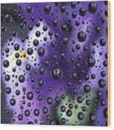 Iris Bubbles Wood Print