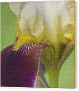 iris Closeup 2 Wood Print