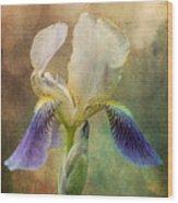 Iris Composite Wood Print