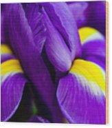 Iris Detail 2 Wood Print