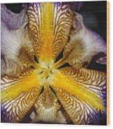 Iris Details Wood Print