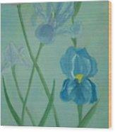 Iris Dreams Wood Print by Alanna Hug-McAnnally