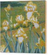 Iris Etude Wood Print