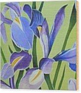 Iris Fields - Center Panel Wood Print