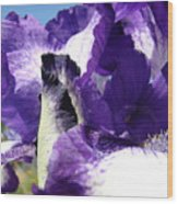 Iris Flower Art Print Purple Irises Botanical Floral Artwork Wood Print