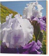 Iris Flowers Purple White Irises Poppy Hillside Landscape Art Prints Baslee Troutman Wood Print