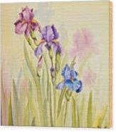 Iris Garden Ll Wood Print