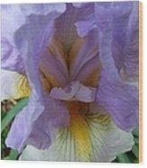 Iris Heart Wood Print