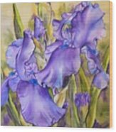 Iris In Purple Wood Print