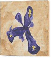 Iris Iv Pixie  Wood Print