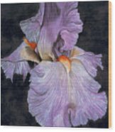 Iris Wood Print by Lawrence Supino