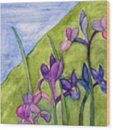 Iris Meadow Wood Print