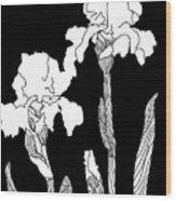 Iris Notan Wood Print