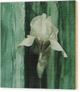 Iris On Green Wood Print