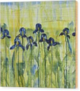 Iris On Parade Wood Print