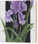 Iris One Wood Print