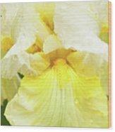 Iris Pride Of Ireland Wood Print