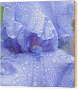 Iris Rainy Day Blue Wood Print