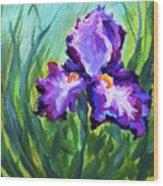 Iris Solo Wood Print