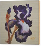Iris Squared 2 Wood Print