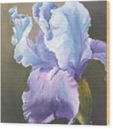 Iris Tears Wood Print