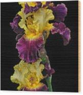 Iris Triple Wood Print