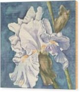 Iris Twenty One Wood Print