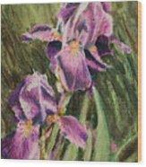 Iris Twins Wood Print