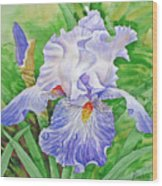 Iris.drops Of Dew .2007 Wood Print