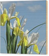 Irises In Blue Sky Art Print Spring Iris Flowers Baslee Troutman Wood Print