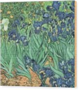 Irises Wood Print by Vincent Van Gogh