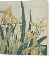 Irises With A Grasshopper Wood Print