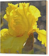 Irises Yellow Iris Flowers Art Prints Floral Canvas Baslee Troutman Wood Print