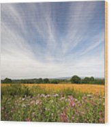 Irish Country Side Meadows Wood Print