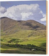 Irish Countryside Wood Print