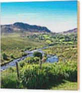 Irish Fields Of Green Wood Print