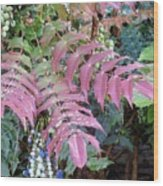 Irish Flora And Fauna 5 Wood Print