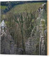 Irish History In The Countryside Wood Print