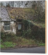 Irish Hovel Wood Print