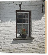 Irish Kettle Of Geraniums County Cork Ireland Wood Print