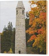 Irish Round Tower Wood Print