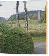 Irish Ruins Wood Print