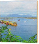Roundstone Seaport Wood Print