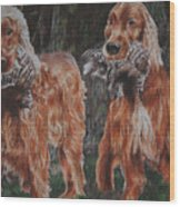 Irish Setters Wood Print