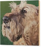 Irish Terrier Wood Print
