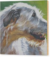 Irish Wolfhound Beauty Wood Print