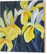 Irisis Wood Print